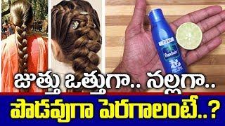 జుట్టు తొందరగా పొడవు పెరగాలంటే I Fast Hair Growth Tips Telugu I Health Tips I Everything in Telugu