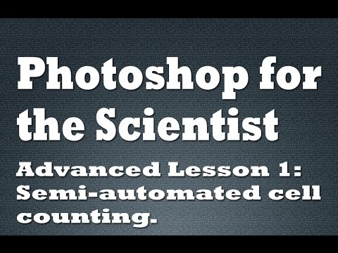 Semi-automated Cell Counting In Photoshop CC
