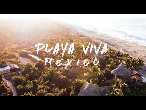 Adventure Mexico | Playa Viva in 4K!