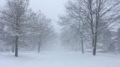 16+ Inch Snowstorm Northfield, Minnesota