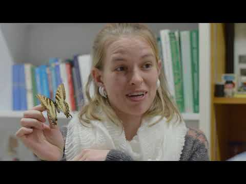 """""""Tales from the Collections"""" -- Yale Peabody Museum online case study video"""