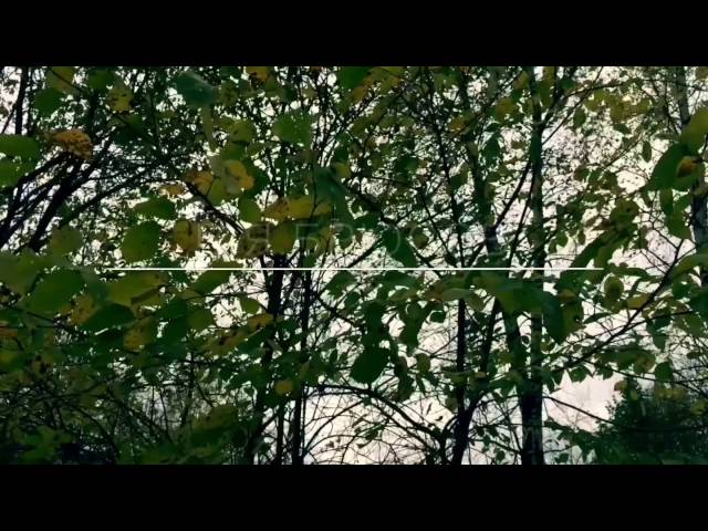 Изображение предпросмотра прочтения – ДарьяФурсова читает произведение «Осенний день был тускл и скуден…» В.Я.Брюсова