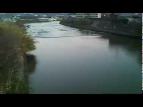 Tsunami in Mihama, Wakayama Prefecture, Japan