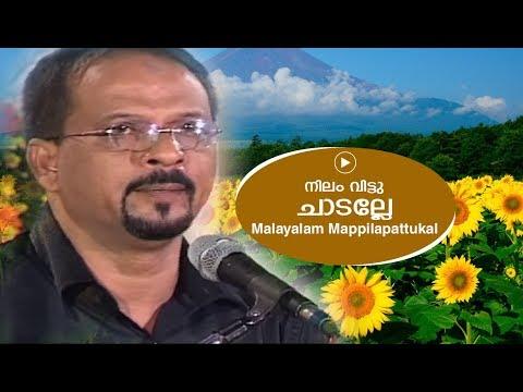 നിലം വിട്ടു ചാടല്ലേ    Edappal bappu    Mappila song    Malayalam song