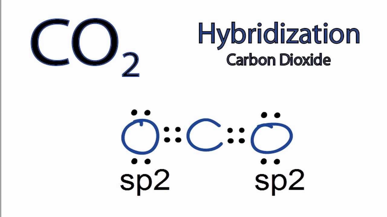 Diagram Of So3 Co2 Hybridization Hybrid Orbitals For Co2 Youtube