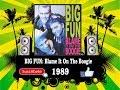 Big Fun - Blame It On The Boogie  (Radio Version)