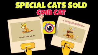 SPECIAL CATS SOLD || COIN CAT CLIPCLAPS
