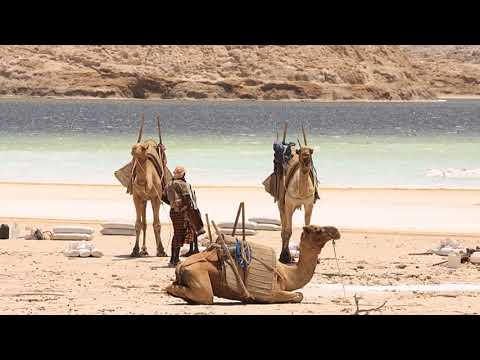 Travel to Djibouti