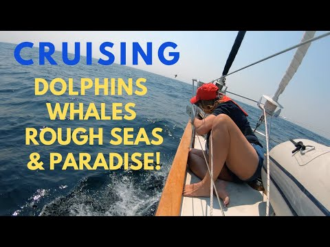 CRUISING, DOLPHINS, WHALES, ROUGH SEAS AND PARADISE!