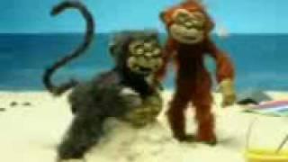 Monkey sange