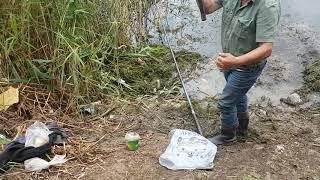 Рыбалка в Ивановке - зеркальный карп