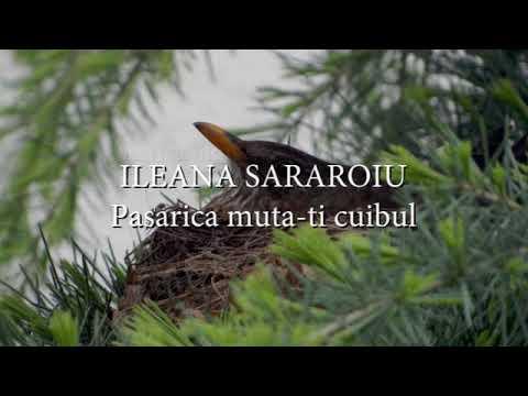 Ileana Sararoiu - Pasarica muta-ti cuibul (versuri, lyrics, karaoke)