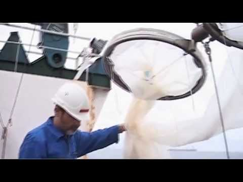Project GENUS - marine research along Namibia's coast (trailer)