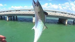 Fishing Skyway Pier State Park in Tampa, Florida