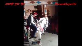 घोडा Marwadi Rajput Ka Ghoda Rajasthani Shaadi Super Hit Video