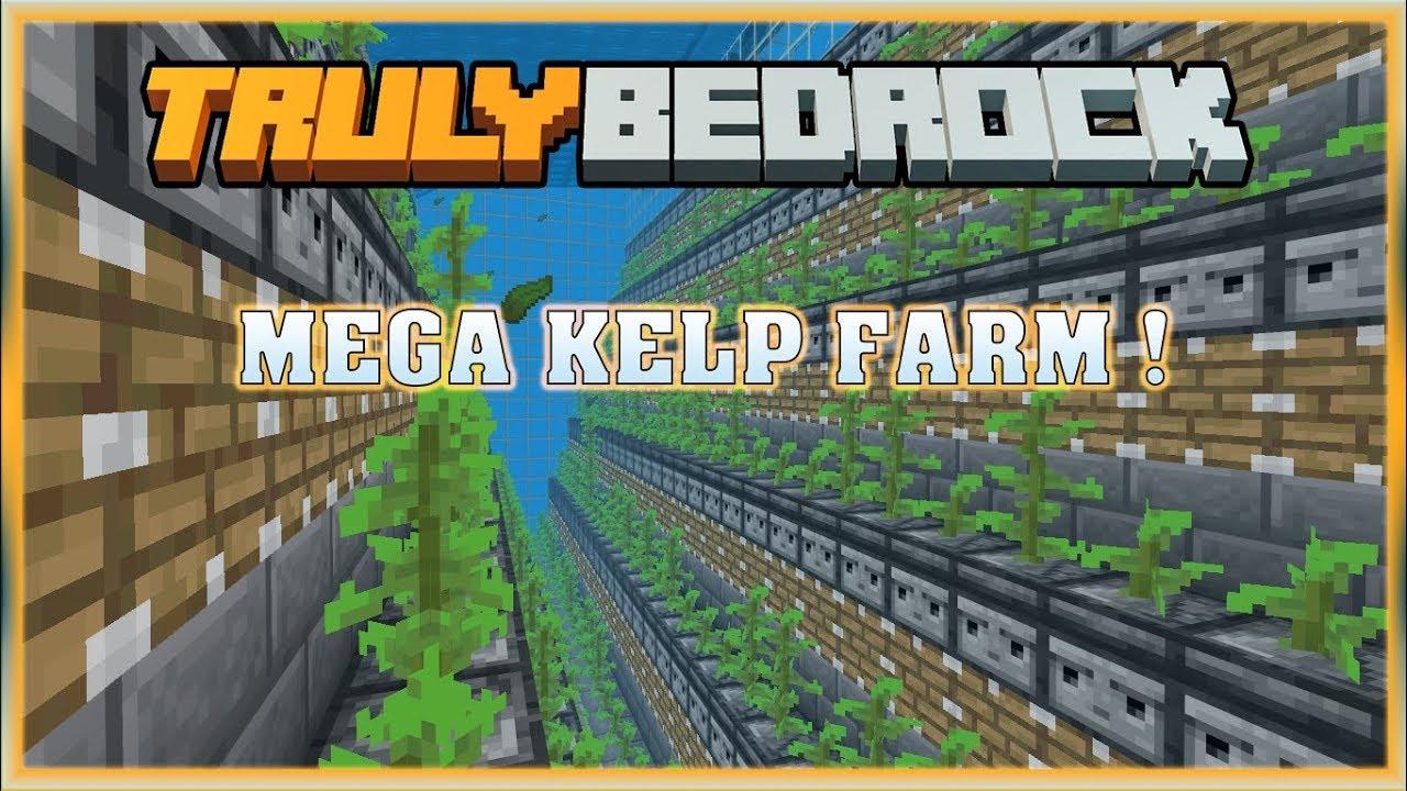 Truly Bedrock S0 EP16 : Mega Kelp Farm Minecraft MCPE