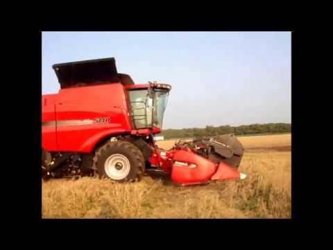 CASE IH 5140 Combine  Wheat harvest in Hokkaido Japan