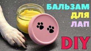 DIY БАЛЬЗАМ - ВОСК ДЛЯ ЛАП СОБАК
