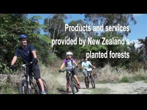 Introduction to forest ecosystem services