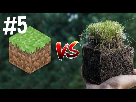 Thumbnail: Minecraft vs Real Life 5