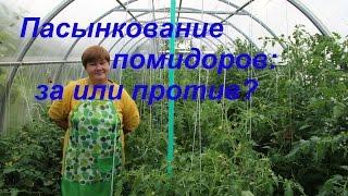Пасынкование томатов: за или против?/Growing tomatoes.