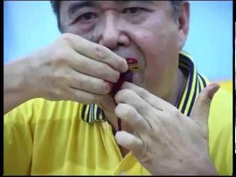 新加坡三皇五帝乩童割舌408 blades (2006)