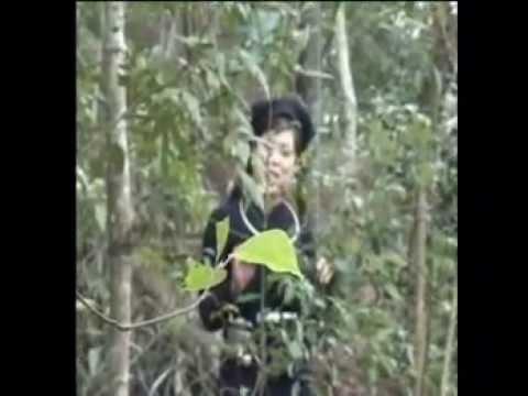 Lượn cọi - Dân tộc Tày Bảo Lạc- Cao Bằng.mpg