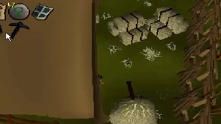 3RD AGE straight outta the hay bales!