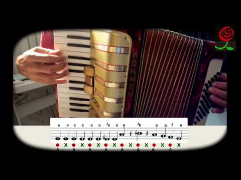 How to play Bubamara Super Easy Gypsy Balkan Accordion FULL Lesson