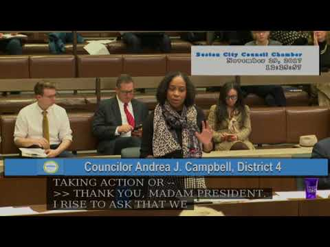 Boston City Council Meeting on November 29, 2017