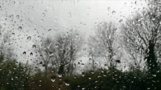 The rain -  Gilly yakir
