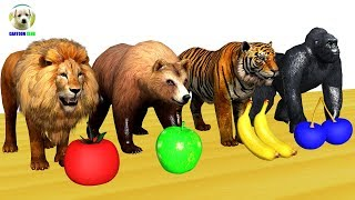 Learn Animals Colorful eat Fruits colors - Learn Colors for Children with Nursery Rhymes song