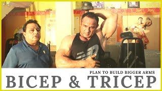 Plan To Build Bigger Arms, Bicep & Tricep