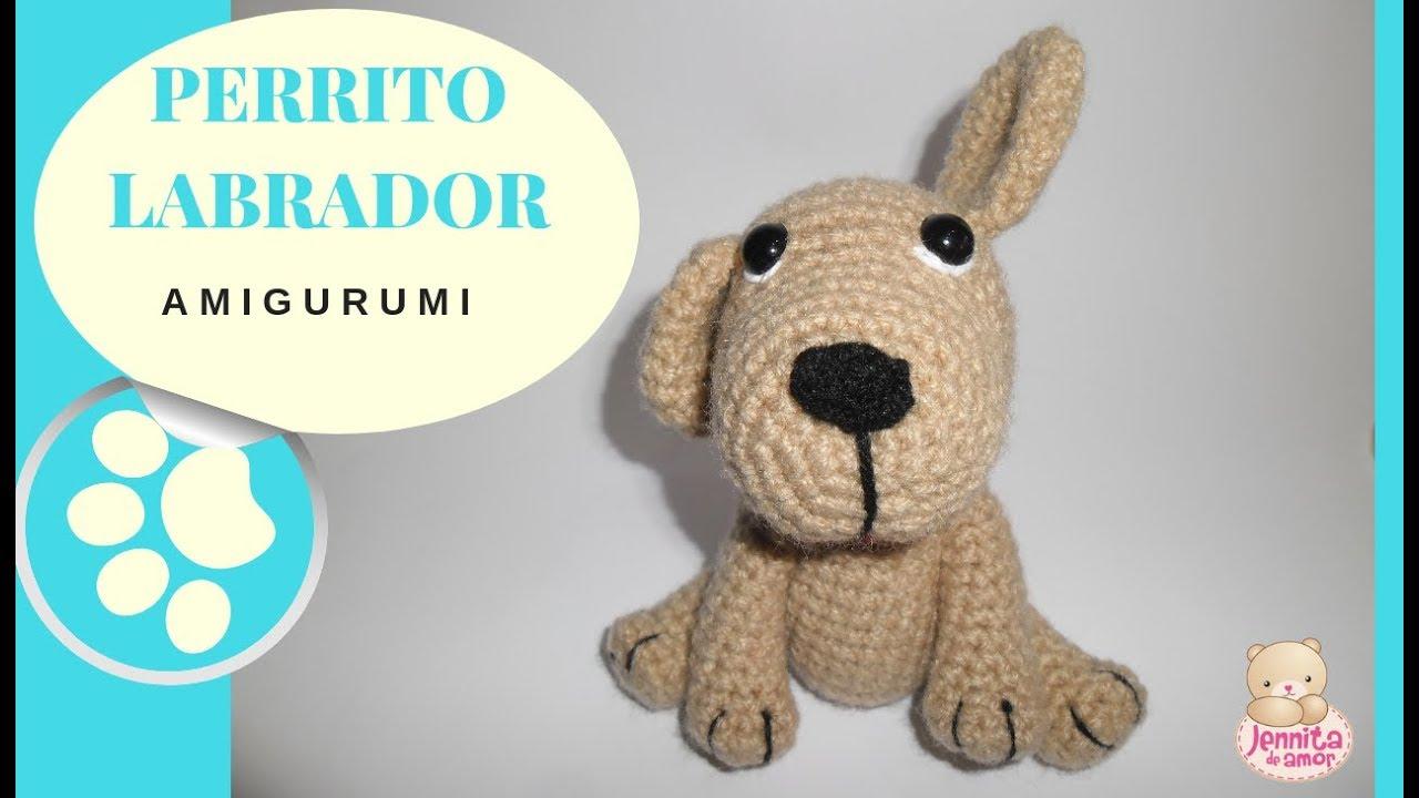 PERRITOS RAZA PUG | Raza pug, Razas de perros | 720x1280
