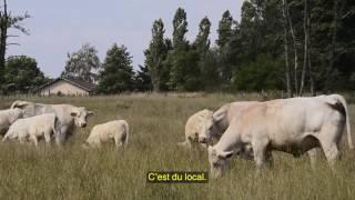 Contrat2 avec l'environnement Portrait d'André Dupré (version sous-titrée)