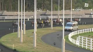 Vidéo de la course PMU PRIX CENTAURUS