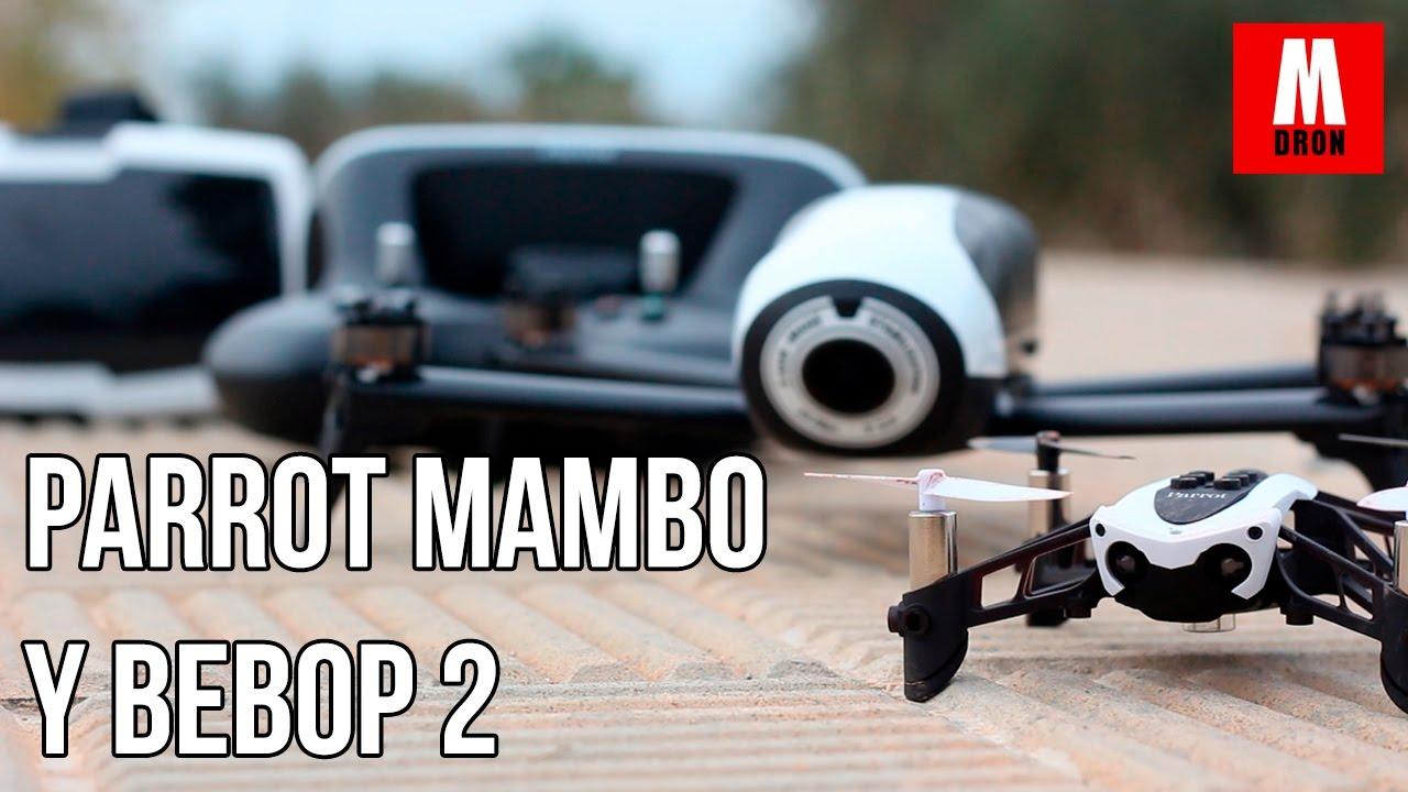 constructeur drone