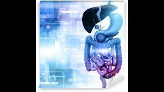 dbanie o zdrowie ,dlaczego chorują narządy wewnętrzne ,ich strefa fizyczna i duchowa