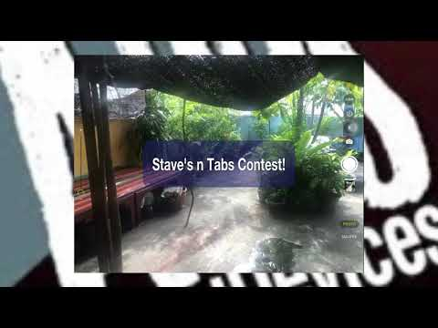 Stave's n Tabs Contest