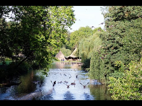 Busbridge Lakes - Your day in Tranquillity - the short cut [for Bridebook]
