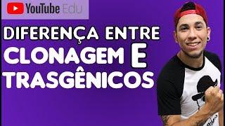 Clonagem e Transgênicos - Prof Patrick Gomes e Tia Jô