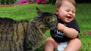 FUNNY CATS AND BABIES PLAYING TOGETHER 😹😹😹Funny Babies and Pets1