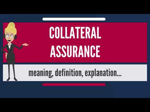What is COLLATERAL ASSURANCE? What does COLLATERAL ASSURANCE mean? COLLATERAL ASSURANCE meaning