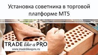 Как установить советник в Metatrader 5