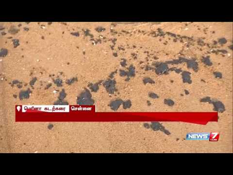 Oil spill pollutes sea after ship accident near Ennore: Reporter Update | News7 Tamil