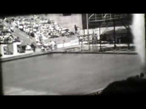 1932 LOS ANGELES OLYMPICS DIVING 16mm
