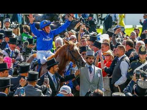 2018 Investec Derby - Masar - Racing UK