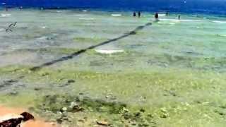 видео Отзывы об отеле » Iberotel Makadi Beach (Иберотель Макади Бич) 5* » Макади » Египет , горящие туры, отели, отзывы, фото