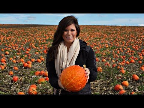 Farmer's Market Foods Organic Pumpkin