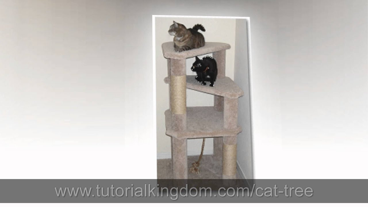 Watch cat condo diy plans build your own cat tree for Condo plans free